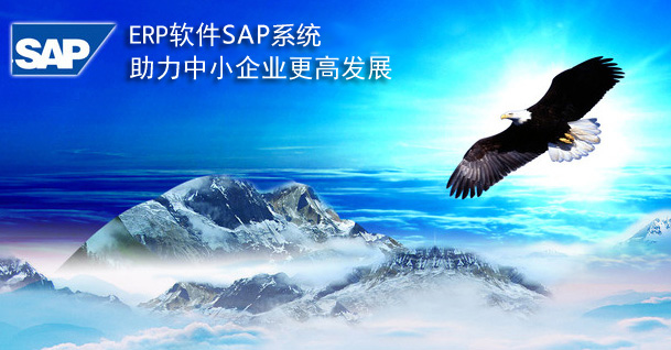 中小型企业ERP系统第一品牌德国SAP系统